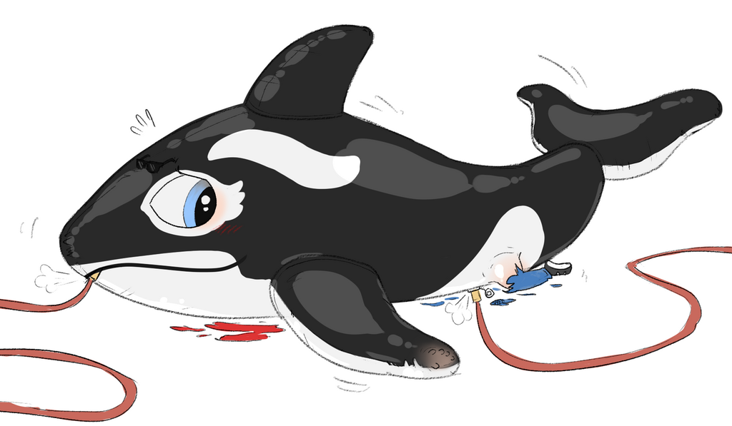 The Party Needs an Orca