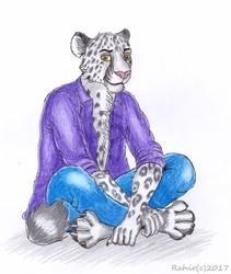 Sitting Snow Leopard