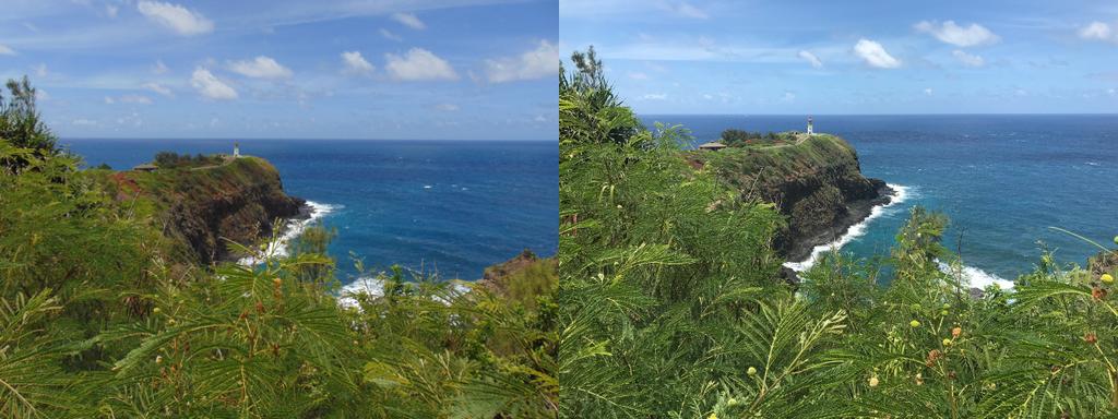 Kilauea Lighthouse (Sony Vs Apple)