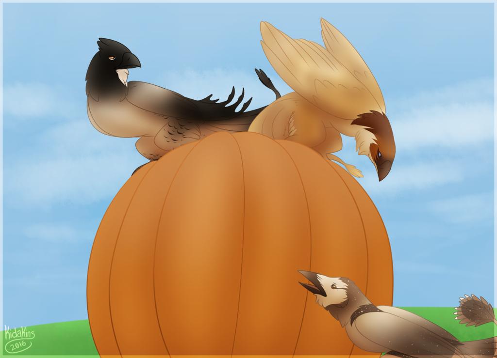 Pumpkin Concerns