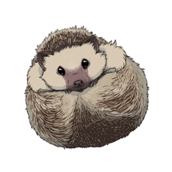 Hedgehog Sticker 2