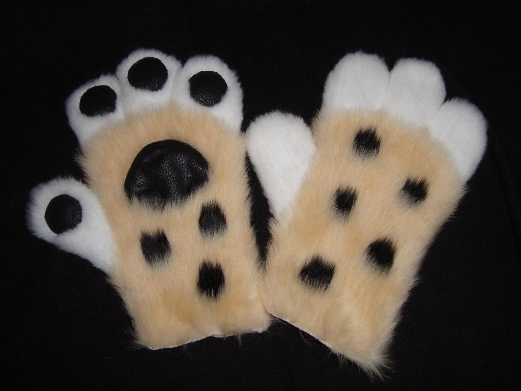 Cheetah paws