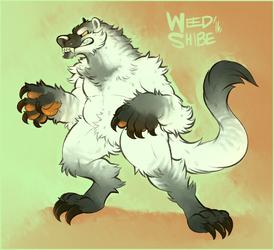 Badger weasel