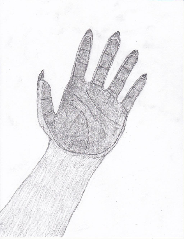 My Left Hand Paw