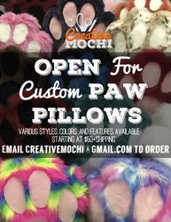 OPEN FOR CUSTOM PAW PILLOWS
