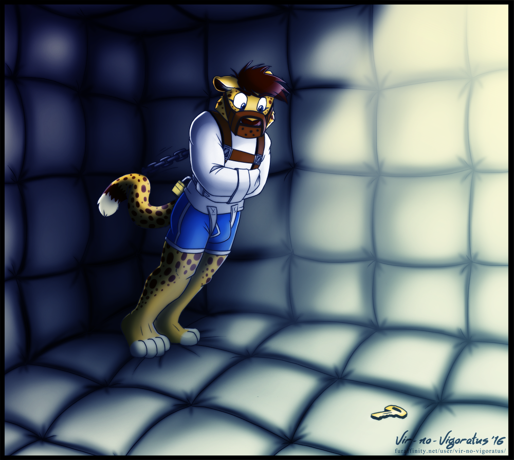 Commission: Solitary Confinement