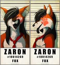 Police Line Up - Zaron