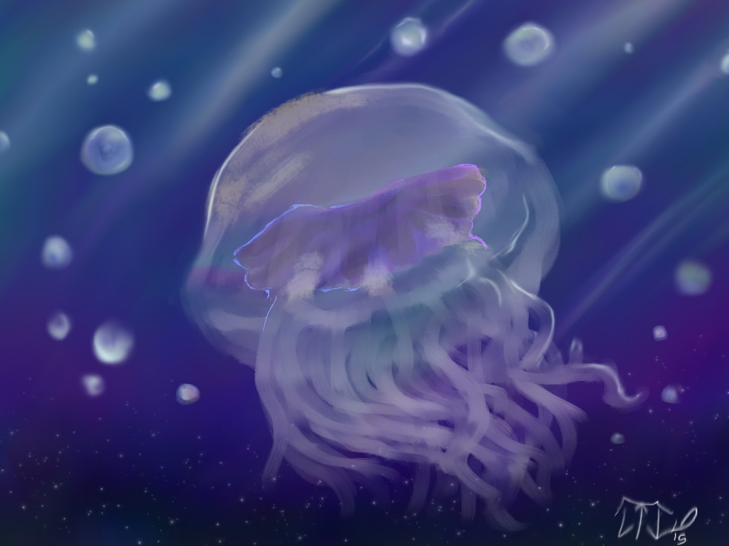 Bluefire Jellyfish