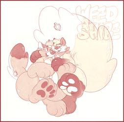 Puffs and Koebi