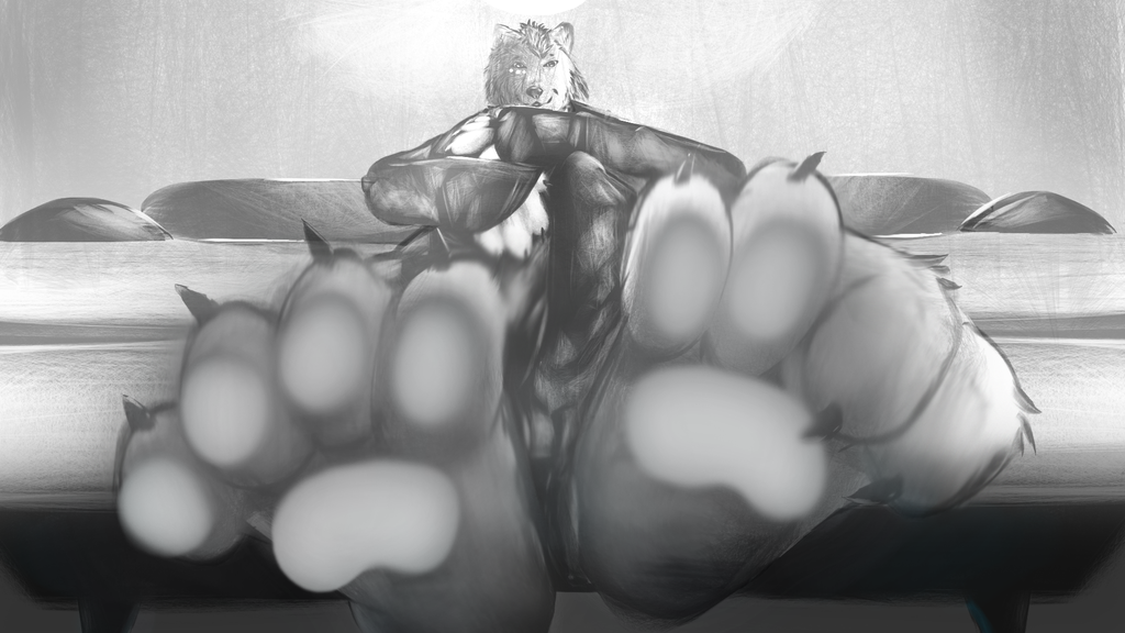 Most recent image: From below (perspective/paw study)