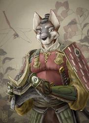 Sakai in Armor