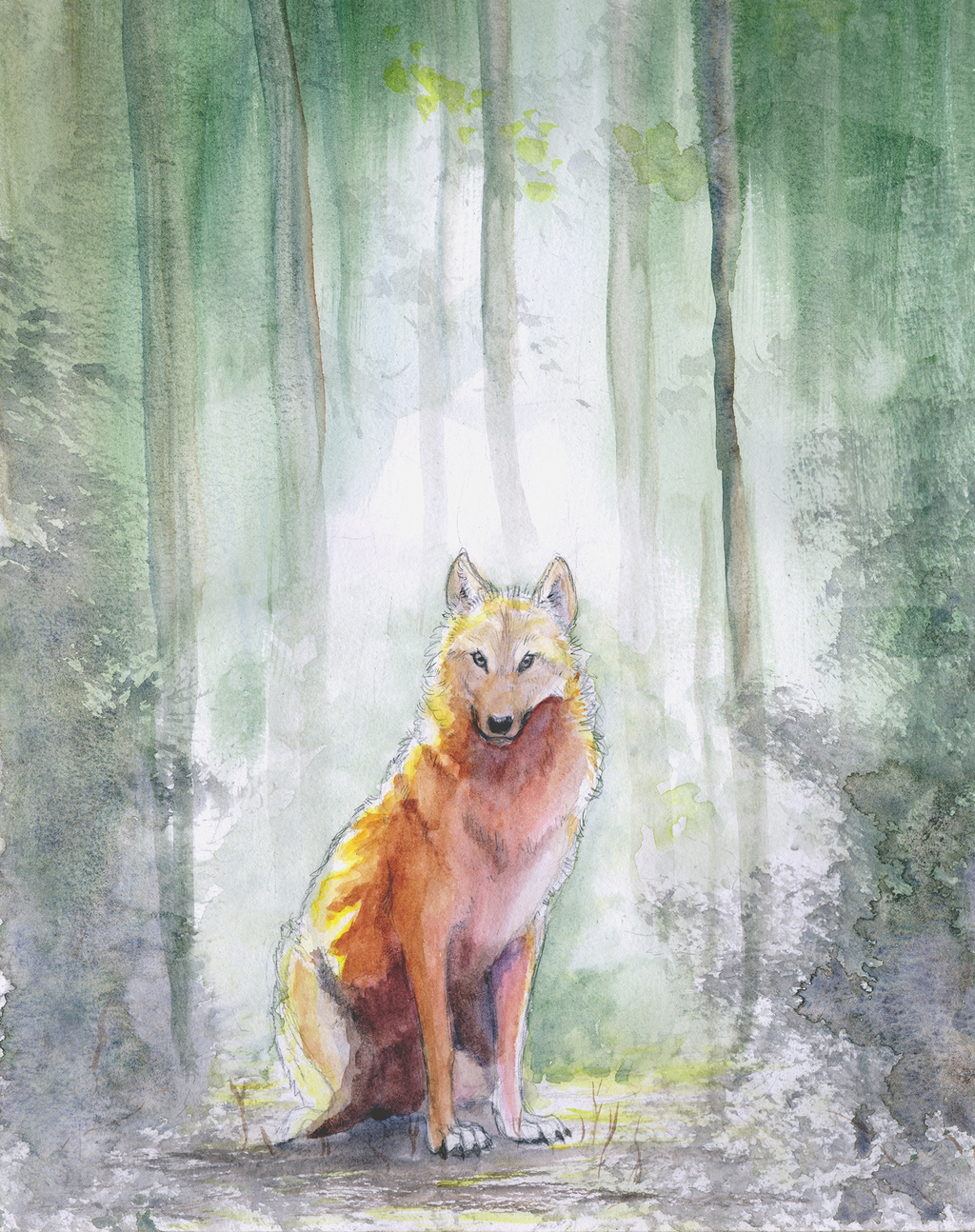 Most recent image: Wolf of the Woods