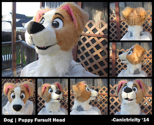 Fursuit Head for Sale!