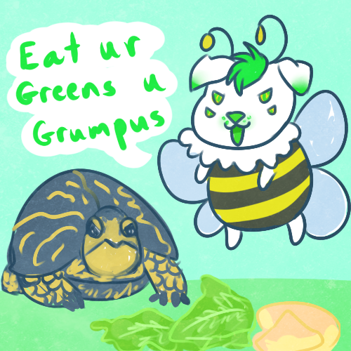 Grumpus Turtle