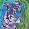 Avatar for WindSong83