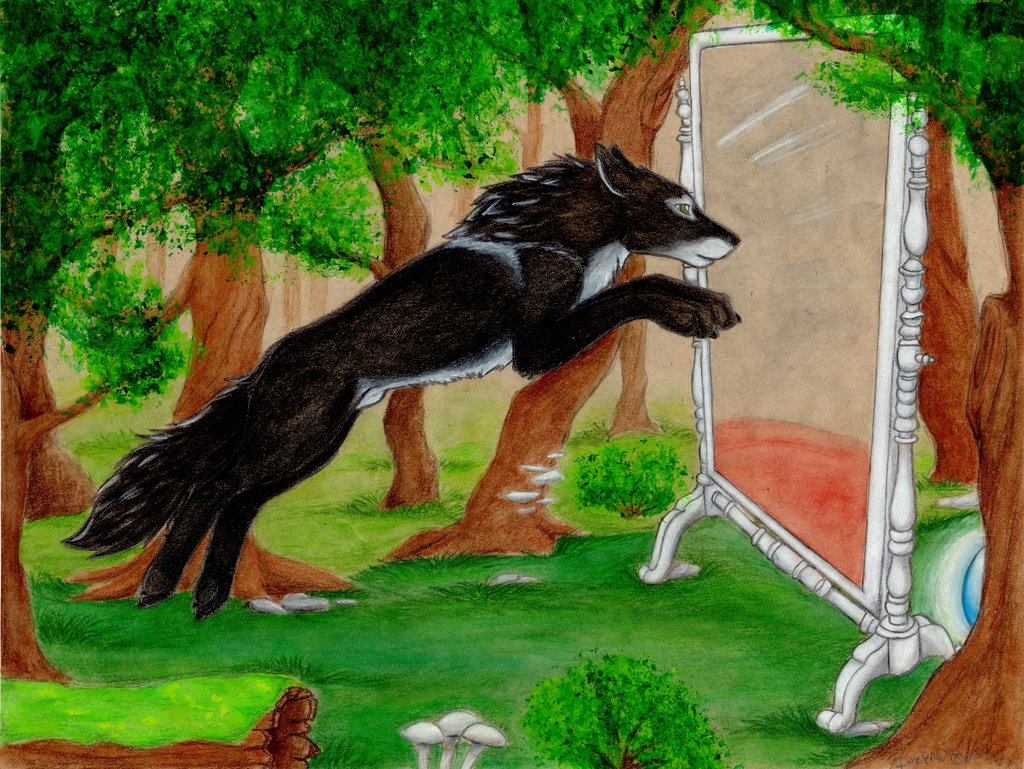 Through the Looking Glass ~ Part 1