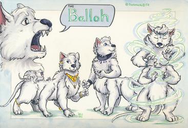 [ref sheet] balloh