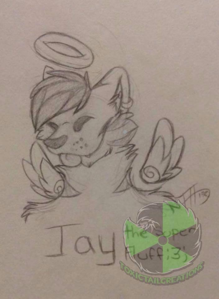 jay tiger sketch