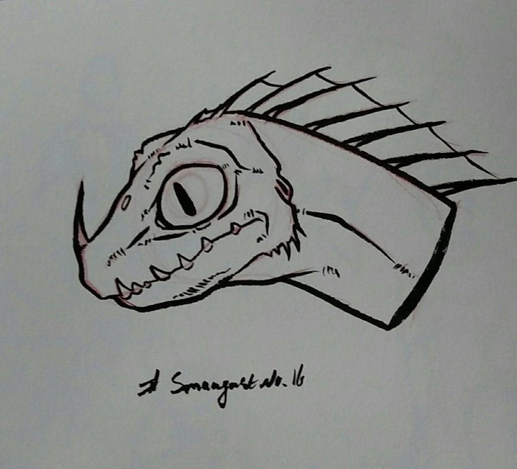 Most recent image: Smaugust #16