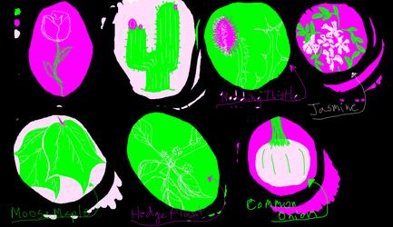 PaiSke 1 - Plants