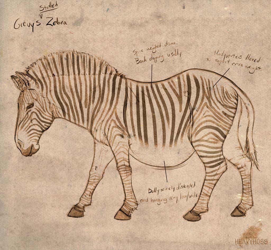 Noone's Zebra [Stuffed]