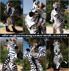 Phar the Zebra Dragon