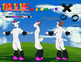 Ollie reference sheet