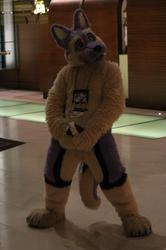 Got Something For you - MFF 2012