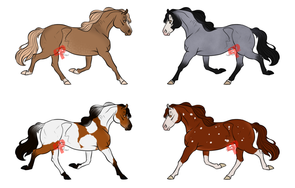 Most recent image: Horse Adopts