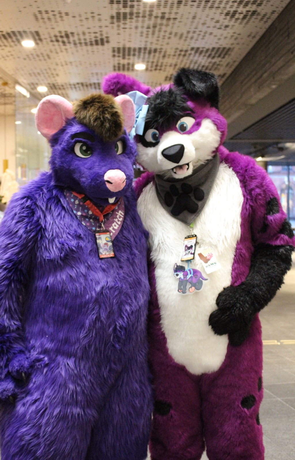 Purple Fursuit Friday