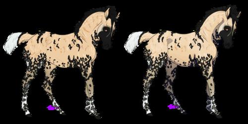 Baada (African Wild Dog)(Sold)