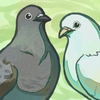 Avatar for fancypigeon