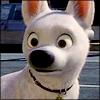 avatar of CarlMZ