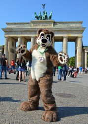 Brown Bear in Berlin