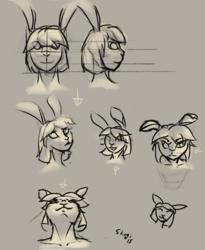 Rabbit Gril Sketches