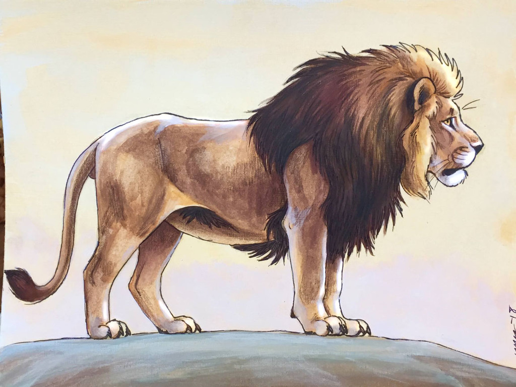 Most recent image: Lion
