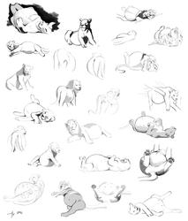 SpeedComm- Lion Sketchpage 2
