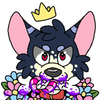 avatar of Starxy
