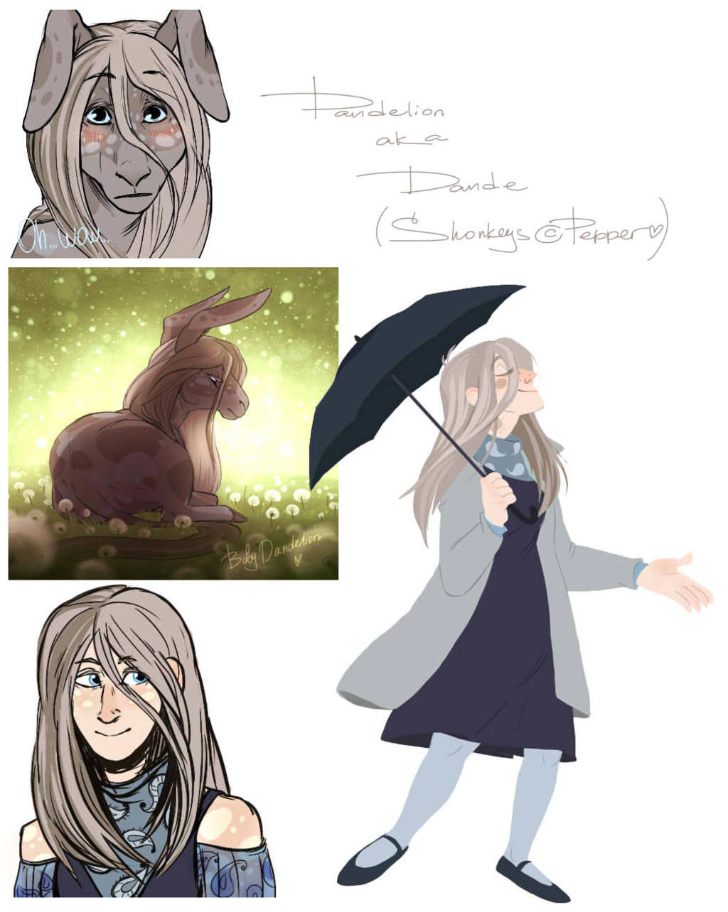 Dandelion the Shonkey