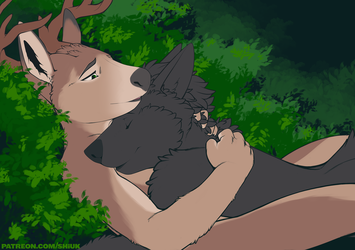 The Deer and the Wolf