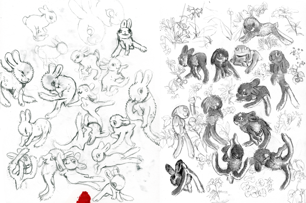 rabbit pages