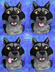 Black Wolf Expressions