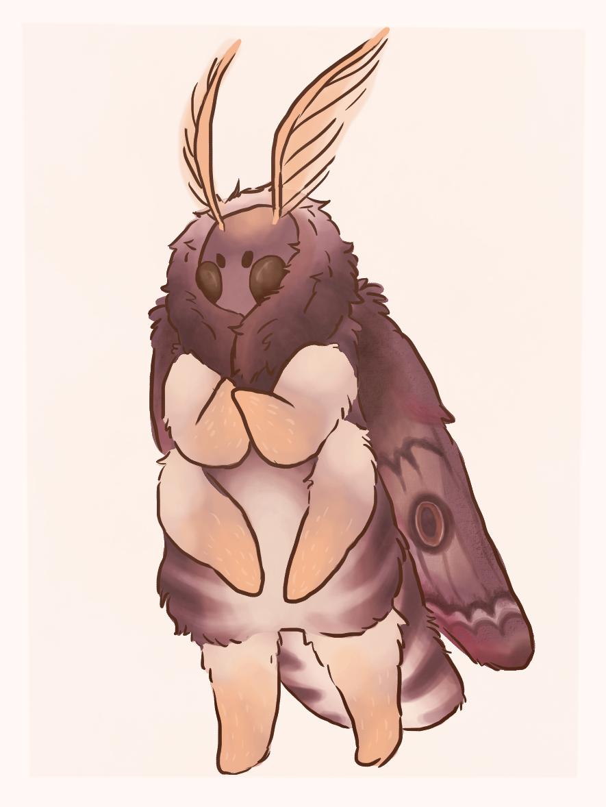 mothball 2
