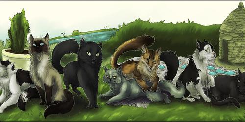 .: Cats [COM]