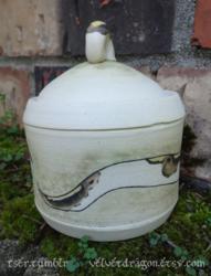 Pied Ball Python Jar Detail
