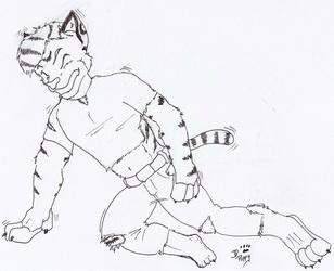 Tiger tiger, burning bright...