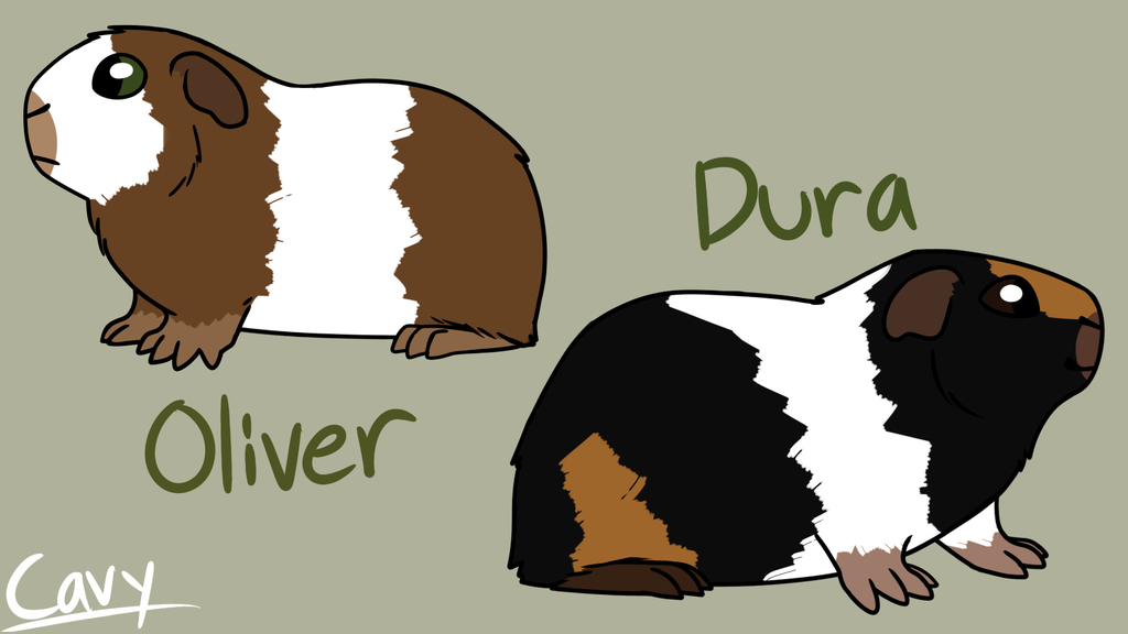 Dura and Oliver Refs