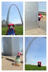 Zeke at the Gateway Arch