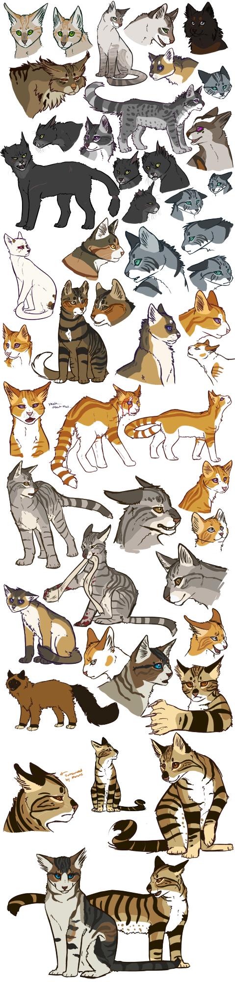 Marks Cats