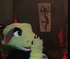 Draco on Tour